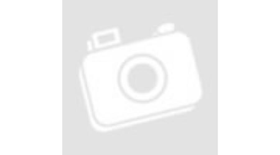 http://vida.cdn.shoprenter.hu/custom/vida/image/cache/w900h500wt1/BGS/1935.jpg?lastmod=1513875069.1482236000